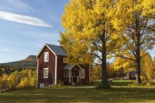 house in fall tom rostron