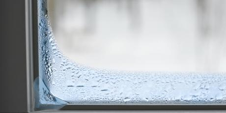 The Issue with Moisture in the Home, blog, tom rostron